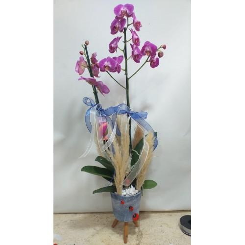 Ayaklı Seramikte 2 Dallı Mor Orkide